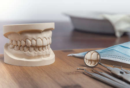 odontology: Dental mold of a set of false teeth with dental tools on a wooden table arranged so that the mirror reflects the teeth in a dentistry and healthcare concept