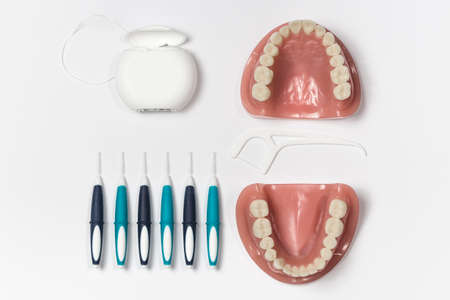 odontology: Upper and lower dentures displayed alongside dental floss and six cleaning picks Stock Photo