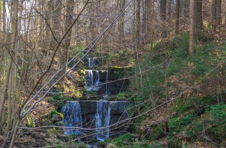 Horský potok protéká lesem a kaskádami Reklamní fotografie