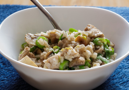 Pork and mushroom Stroganoff with rice on view