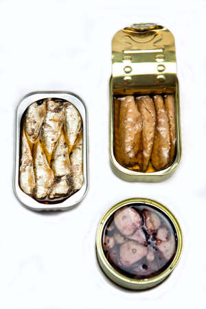 hermetic: Tins of different sizes and opening, mackerel in vegetable oil, sardines and Octopus