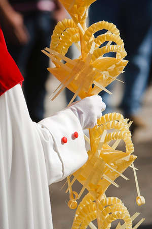 palm sunday: Detail penitent  holding a palm during Holy Week on Palm sunday, Spain