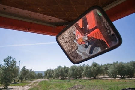 Reflection in a mirror of a tractor in a field of olive trees, Ja�n, Andalusia, Spain