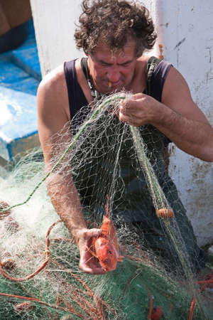untangle: Sailor taking a fish of their fishing nets in the port of Estepona, province of malaga, Spain Editorial