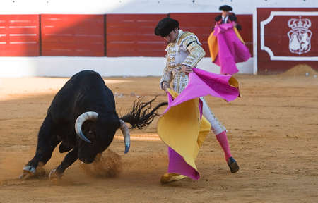 Spanish Bullfighter Cayetano Rivera with the Cape in the Sabiote bullring, Sabiote, Jaen pronvince, Spain, 9 september 2011 新聞圖片