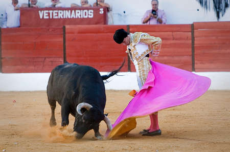 Spanish Bullfighter Jose Carlos Venegas with the Cape in the Sabiote bullring, Sabiote, Jaen pronvince, Spain, 9 september 2011