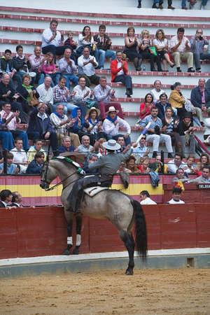 braveness: Alvaro Montes, bullfighter on horseback spanish, Baeza, Jaen, Spain, 13 october 2008