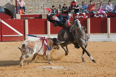 braveness: Alvaro Montes, bullfighter on horseback spanish, Ubeda, Jaen, Spain, 29 september 2011