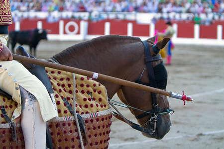 weaken: Picador bullfighter, lancer whose job it is to weaken bull Editorial