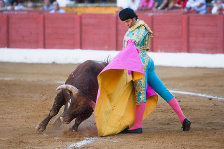 The spanish bullfighter Juan De Felix with the capote in Andujar, province of Jaen, Spain, 10 serptember 2011