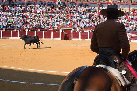 braveness: Diego Ventura, bullfighter on horseback spanish, Ubeda, Jaen province, Spain, 29 september 2008