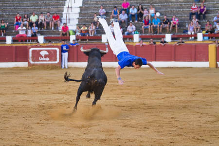 avoids: Spanish recortador performed with expertise pirouettes before the onslaught of the brave bull or heifer as are cuts, jumping over or side antitheses in accordance to the waist of the phytons bulls Editorial