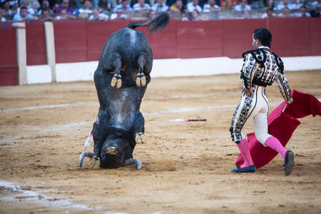 capote: Ubeda, Jaen province, SPAIN - 27 april 2009  Spanish bullfighter Ivan Fandiño with the capote or cape, bull turns doing twirl with the horns in the soil, Ubeda, Jaen province, Andalusia, Spain