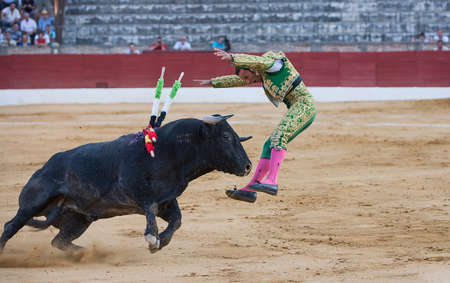 Banderillero, the torero who, on foot, places the darts in the bull, the banderillas is Brightly-coloured darts placed in the bull Imagens - 24047902