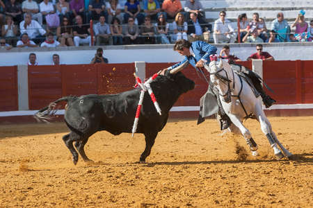 Pozoblanco, Corodoba province, SPAIN- 25 september 2011  Spanish bullfighter on horseback Pablo Hermoso de Mendoza bullfighting on horseback playing the head of the bull with his hand in Pozoblanco, Cordoba province, Andalusia, Spain