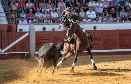 braveness: Pozoblanco, Cordoba province, SPAIN- 25 september 2011  Spanish bullfighter on horseback Diego Ventura bullfighting on horseback, with the sword of death to kill the bull, in Pozoblanco, Cordoba province, Andalusia, Spain Editorial