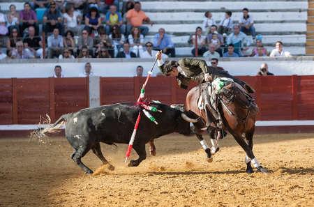 braveness: Pozoblanco, Cordoba province, SPAIN - 25 september 2011  Spanish bullfighter on horseback Diego Ventura bullfighting on horseback, with the sword of death to kill the bull, in Pozoblanco, Cordoba province, Andalusia, Spain