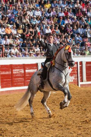 Pozoblanco, Cordoba province, SPAIN - 14 august 2011  Spanish bullfighter on horseback Leonardo Hernandez putting the bull banderillas in Pozoblanco, Cordoba province, Andalusia, Spain