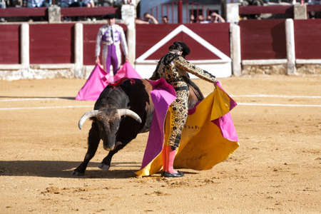 capote: Ubeda, Jaen province, SPAIN - 29 september 2010  Spanish bullfighter Morante de la Puebla with the capote or cape bullfighting called chicuelina a bull of nearly 600 kg  during a bullfight held in Ubeda, Jaen province, Spain, 29 september 2010