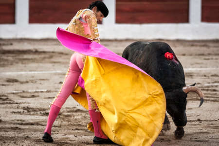 cid: Linares, Jaen province, SPAIN - 28 august 2011  Spanish bullfighter Manuel Jesus El Cid with the capote or cape bullfighting a bull of nearly 600 kg of black ash during a bullfight held in Linares, Jaen province, Spain, 28 august 2011