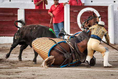tremendous: Linares, Jaen province, SPAIN - 28 august 2011  Brave bull of black color and 640 Kg knocks down the horse out of the chopper in a tremendous onslaught, the chopper is subject as you can stand on the floor behind the horse during a bullfight held in Linar