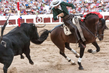 Linares, Jaen province, SPAIN- 37 august 2011  Spanish bullfighter on horseback Diego Ventura bullfighting on horseback, nails a flag of red on the back of the bull jumping trying to achieve with their horns to the bullfighter, in Linares, Jaen province,