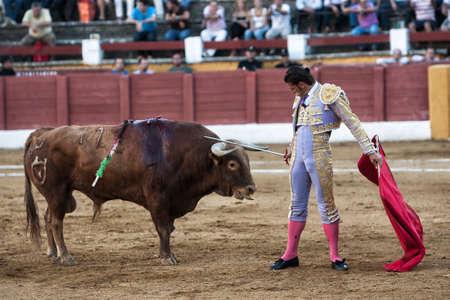 spainish: Andujar, Jaen province, SPAIN - 10 september 2011  Spainish bullfighter David Valiente placing his sword on the head of the bull in an act of courage in the Bullring of Andujar, Jaen province, Andalusia, Spain