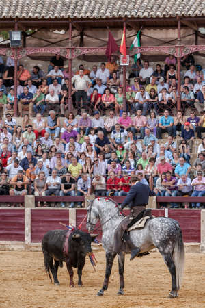Ubeda, Jaen province, SPAIN - 2 october 2010  Spanish bullfighter Fermin Bohorquez bullfighting in front of the brave bull with its horse, the public is looking attentively at the toreador in Ubeda, Jaen province, Spain
