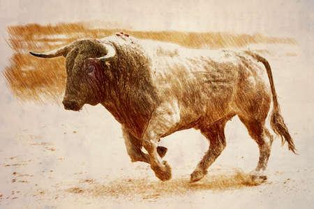 bullfight: Bull de color canela que galopa en una corrida de toros, Andaluc�a, Espa�a Foto de archivo