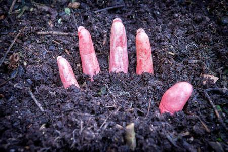 bury: hand of murdered woman buried under the ground Stock Photo