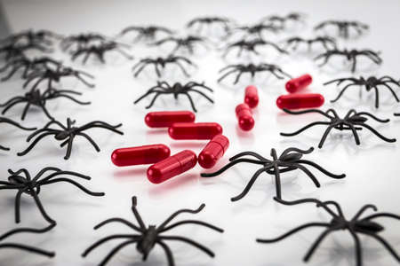 phobia: Spiders around capsules on white background, concept phobia to medicines Stock Photo