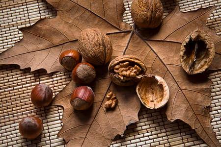 dry leaf: Walnuts and hazelnuts on a dry leaf