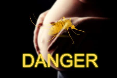 imminent: Pregnant woman, imminent danger to the virus Zika, DANGER