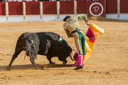 bullfighting: Ubeda, Spain - October 1, 2011: The Spanish Bullfighter Curro Diaz bullfighting with the crutch in the Bullring of Ubeda, Spain
