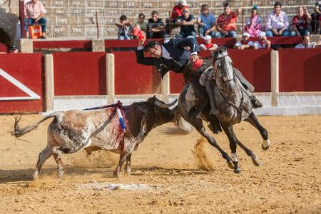 alvaro: Ubeda, SPAIN - September 29, 2011: Alvaro Montes, bullfighter on horseback spanish, Ubeda, Jaen, Spain