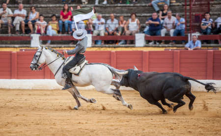 alvaro: Andujar, SPAIN - September 12, 2009: Alvaro Montes, bullfighter on horseback spanish, Ubeda, Jaen, Spain Editorial