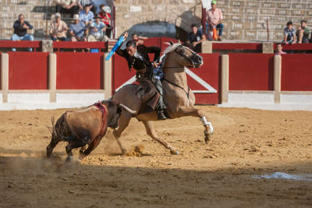 alvaro: Ubeda, SPAIN - September 29, 2011: Noelia Mota, bullfighter on horseback spanish, Ubeda, Jaen, Spain