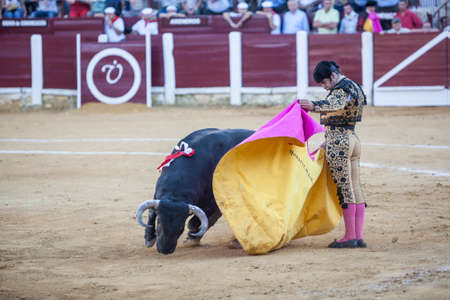 bullfighting: Andujar, Spain - September 29, 2010: The Spanish Bullfighter Morante de la Puebla bullfighting with the crutch in the Bullring of Ubeda, Spain Editorial