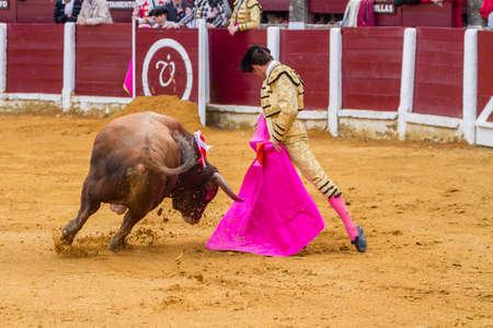 el fandi: Andujar, Spain - October 4, 2010: The Spanish Bullfighter El Fandi bullfighting with the crutch in the Bullring of Ubeda, Spain