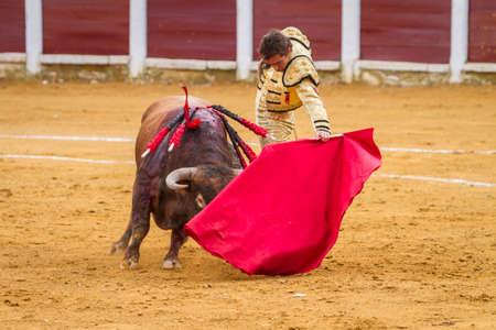el fandi: Andujar, Spain - September 4, 2010: The Spanish Bullfighter El Fandi bullfighting with the crutch in the Bullring of Ubeda, Spain