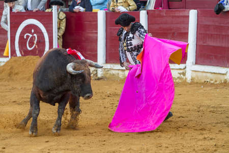 bullring: Andujar, Spain - September 4, 2010: The Spanish Bullfighter Daniel Luque bullfighting with the crutch in the Bullring of Ubeda, Spain