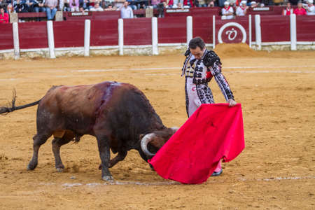 cid: Andujar, Spain - September 4, 2010: The Spanish Bullfighter Daniel Luque bullfighting with the crutch in the Bullring of Ubeda, Spain