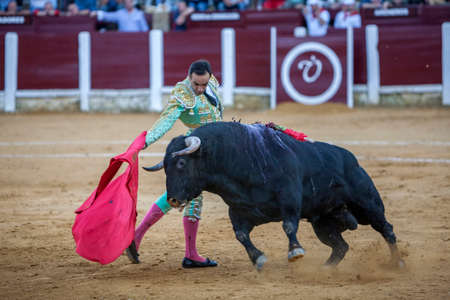 cid: Andujar, Spain - September 29, 2010: The Spanish Bullfighter Daniel Luque bullfighting with the crutch in the Bullring of Ubeda, Spain