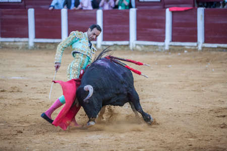 cid: Ubeda, Spain - September 29, 2010: The Spanish Bullfighter Daniel Luque bullfighting with the crutch in the Bullring of Ubeda, Spain