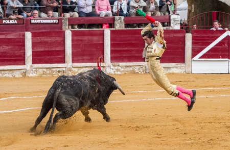 el fandi: Ubeda, SPAIN - October 4, 2010: El Fandi putting flags during a bullfight, Ubeda, Jaen province, Andalusia, Spain