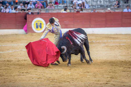 bullring: Baeza, Spain - August 15, 2009: The Spanish Bullfighter Sebastian Castella bullfighting with the crutch in the Bullring of Andujar, Spain