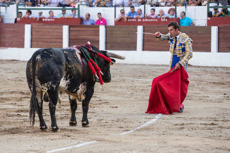 david fandila: Linares, SPAIN - August 28 2014: The Spanish Bullfighter David Fandila El Fandi preparing to enter to kill the bull in the Bullring of Linares, Spain Editorial