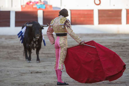 bullfighting: Linares, SPAIN - August 28 2014: The Spanish Bullfighter Curro Diaz bullfighting with the crutch in the Bullring of Linares, Spain