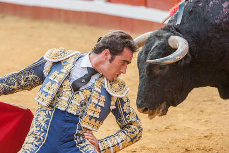 el fandi: Pozoblanco, Spain - September 23, 2011: The Spanish Bullfighter David Fandila El Fandi bullfighting with the crutch, a few inches of the bulls head in the Bullring of Pozoblanco, Spain