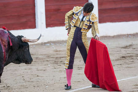 Linares, SPAIN - August 28 2011: The Spanish Bullfighter Francisco Ordoñez Paquirri bullfighting with the crutch in the Bullring of Linares, Spain